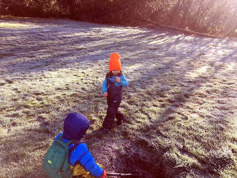 Exploring the frosty meadow