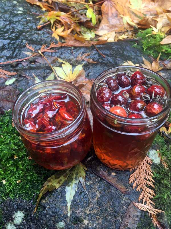 Rose Hip Honey