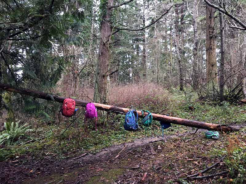 Our backpack rack at Forest Home