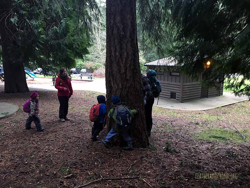 "Little ""mice"" staying safe from ""fire"" by seeking shelter at a Douglas Fir tree"