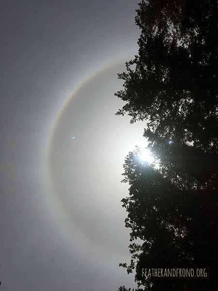 A sun bow!