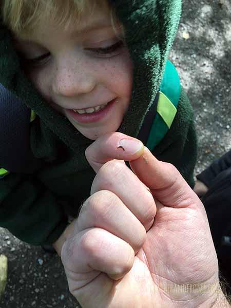 The smallest slug ever!