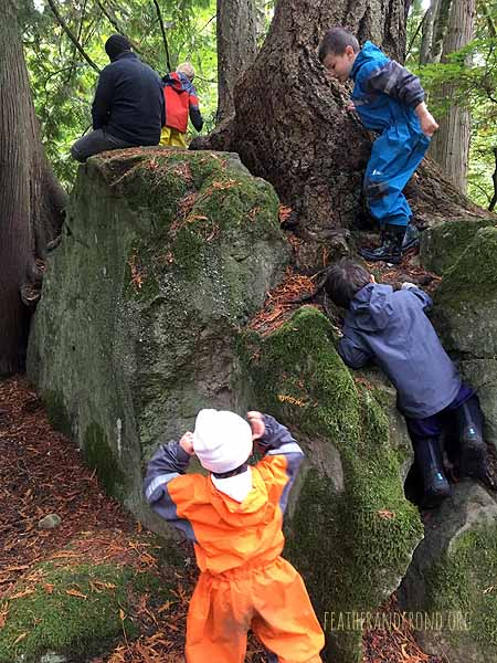 Using our careful fox feet to safely navigate Squirrel Rock