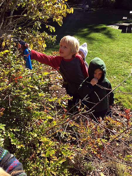 Spraying our Magic Spider Spray to reveal webs