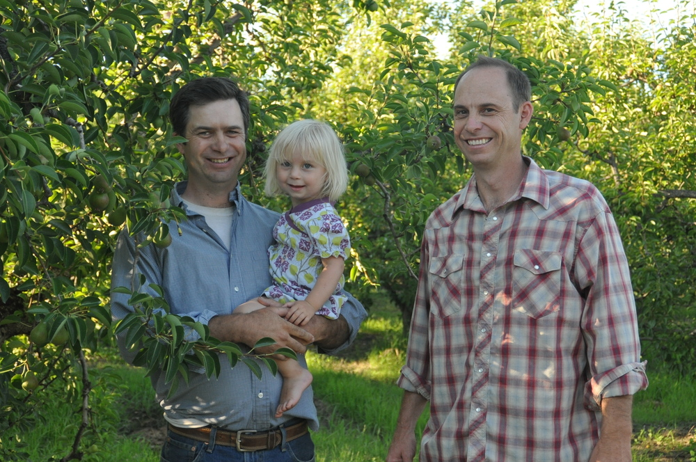 Steve Johnson (at right) in the pear orchard in Ukiah with brother Pete and niece.