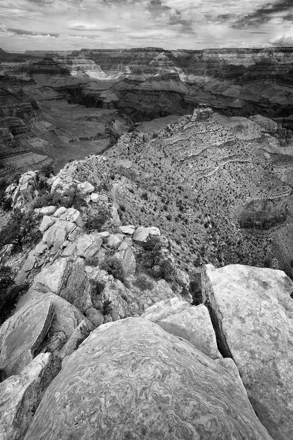 Grand-Canyon-National-Park-ABP-Cedar-Ridge_black-and-white.jpg