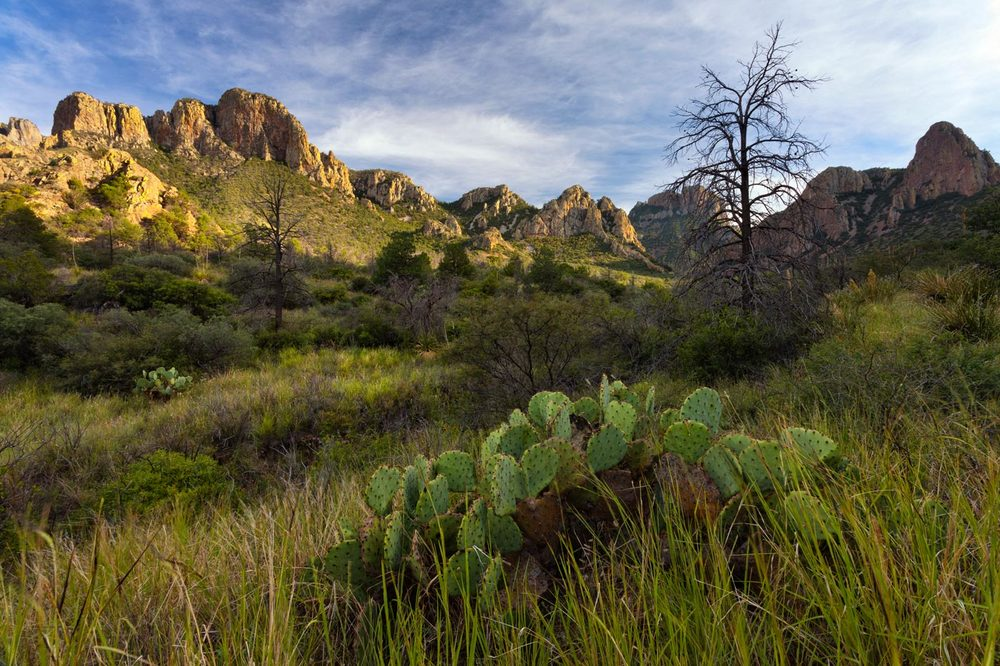 Big-Bend-National-Park-ABP-Green-Gulch.jpg