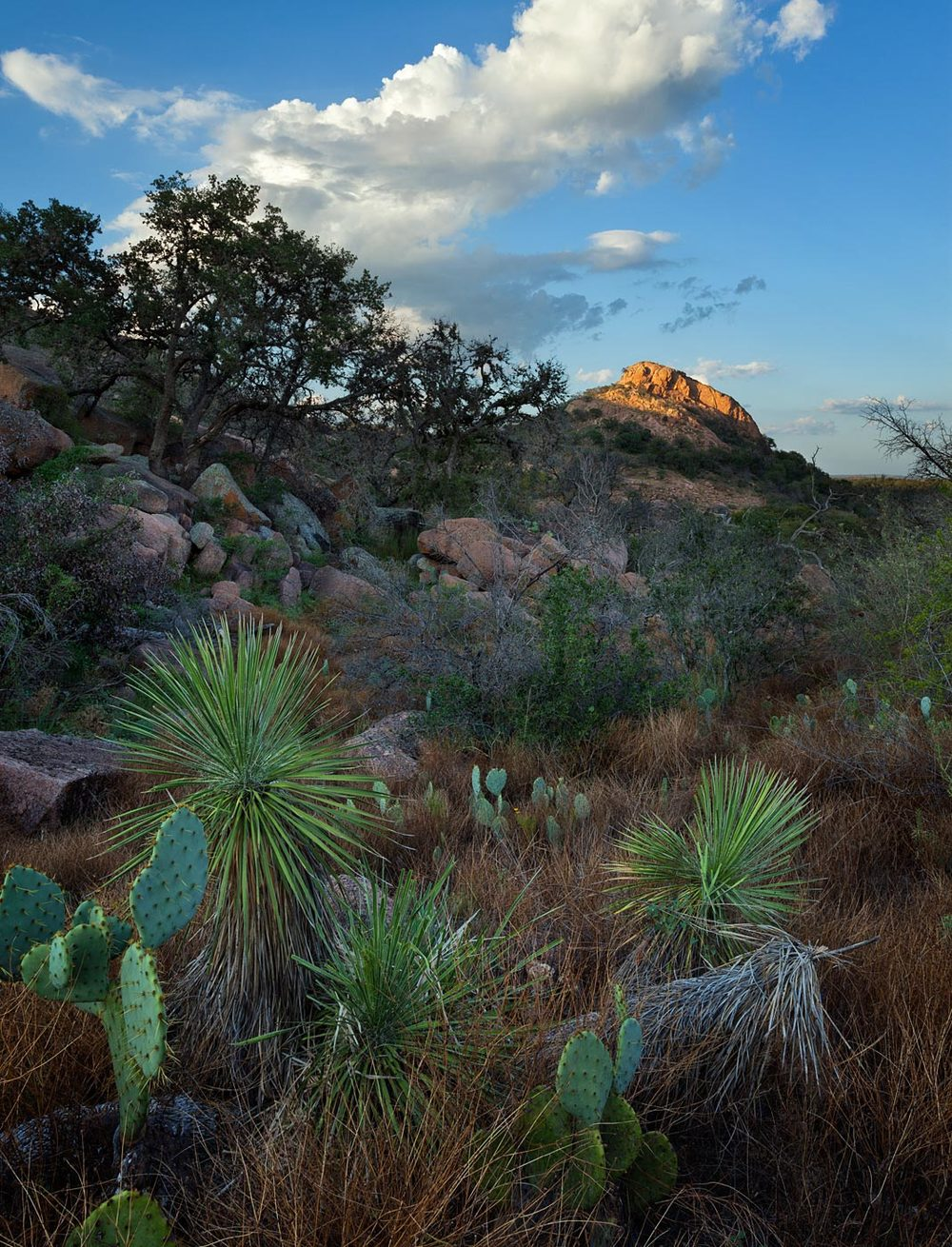 Enchanted-Rock-ABP-Turkey-Peak.jpg