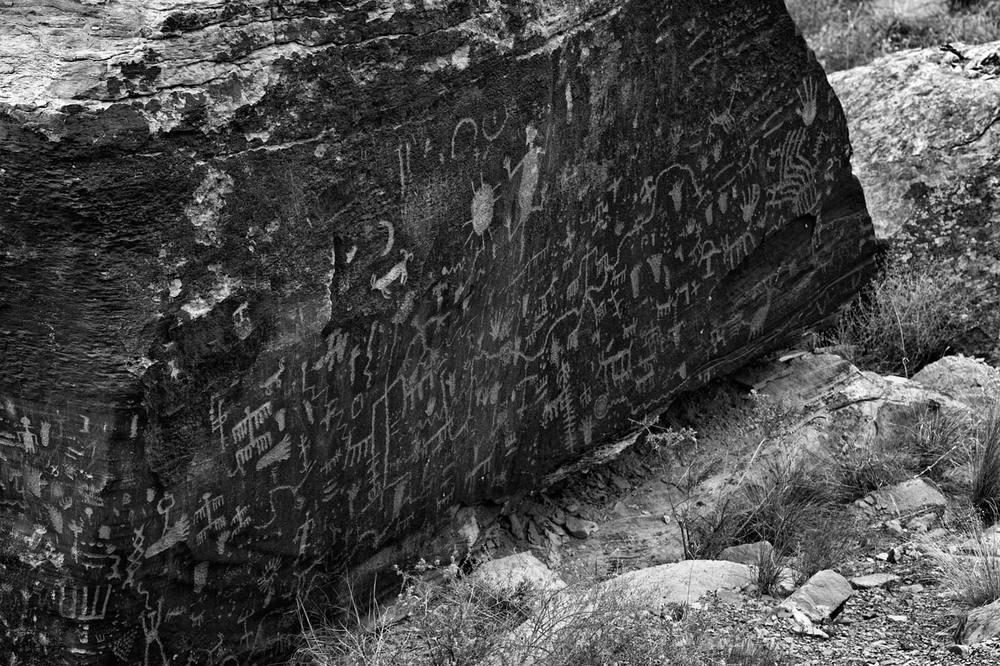 Petrified-Forest-National-Park-ABP-Newspaper-Rock2.jpg