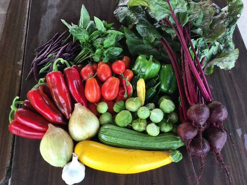 September - Basil, Cilantro, Dill, Lemon grassGarbanzo beans, freshCabbage- red & greenCelery, Leeks, Pac Choi, PotatoesPeppers- Sweet roasting, jalepeno, poblano, habaneroTomatoes- heirloom & romasZucchini- green & yellow