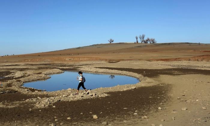 Reuters Drought Image