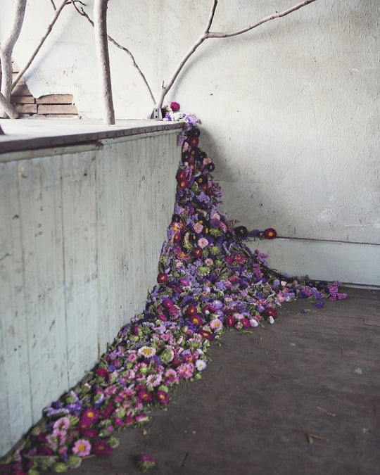 Throwback- flower house installation in Detroit by Lisa Waud 📷: Heather Saunders