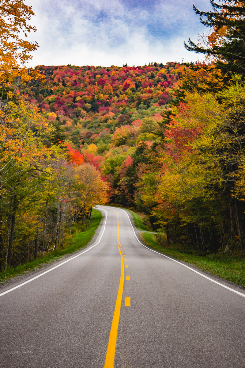 Fall Foliage Along Route 250 - West Virginia