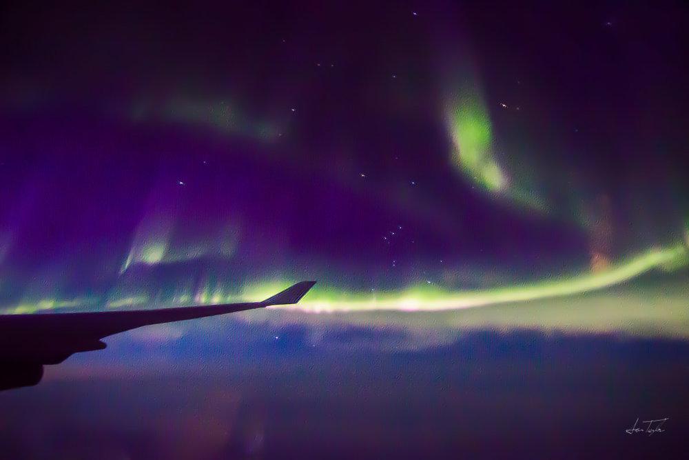 Aurora, Racing the Night - Alaska