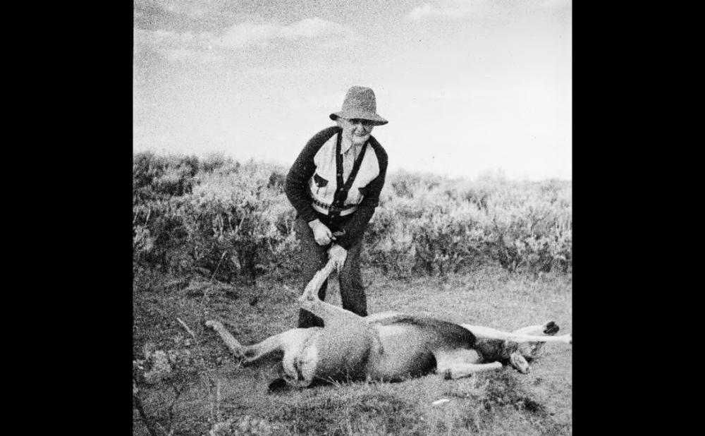 Josie and deer.png