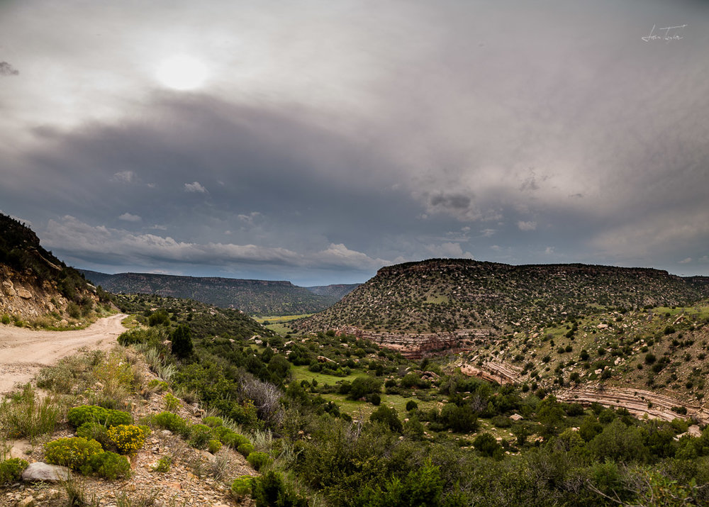 Mills Canyon, New Mexico