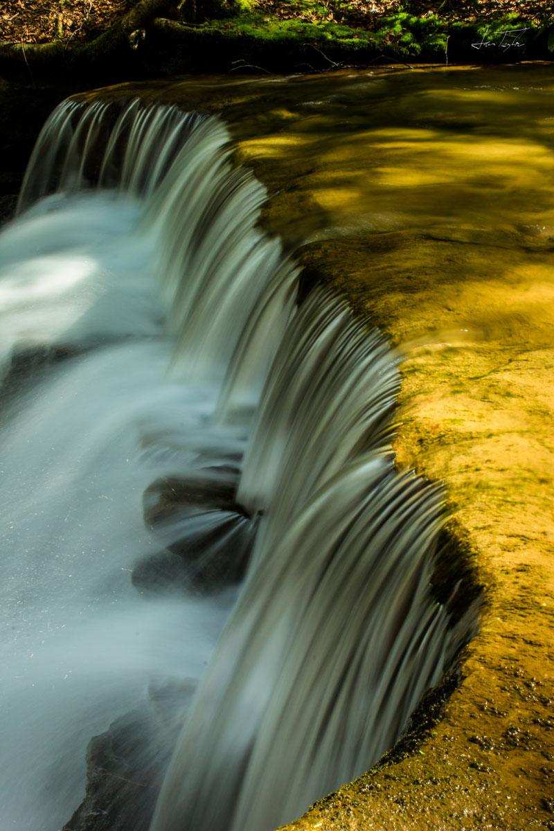 Falls In Gold - West Virginia