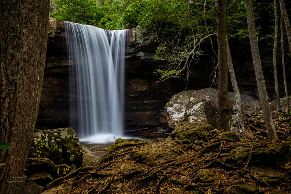 Midweek At Cucumber Falls - Pennsylvania
