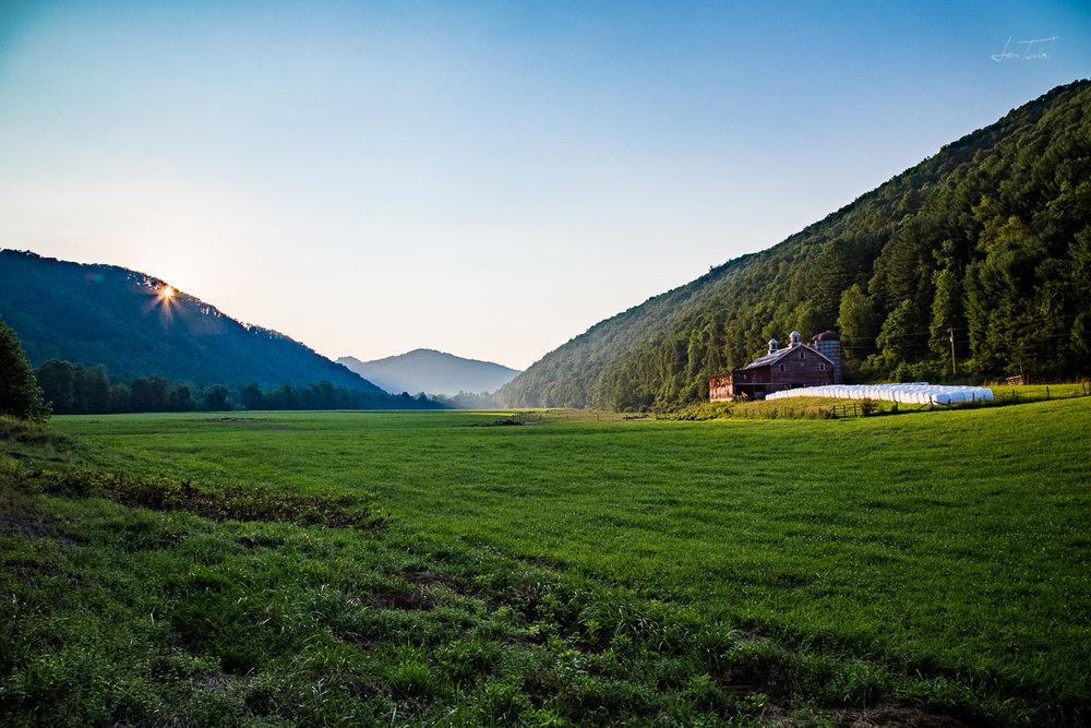 Better Left Alone - West Virginia