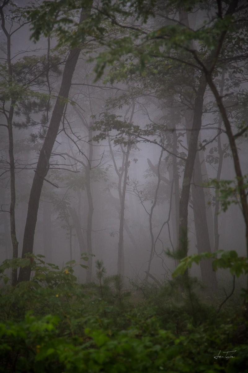 Low Clouds - West Virginia