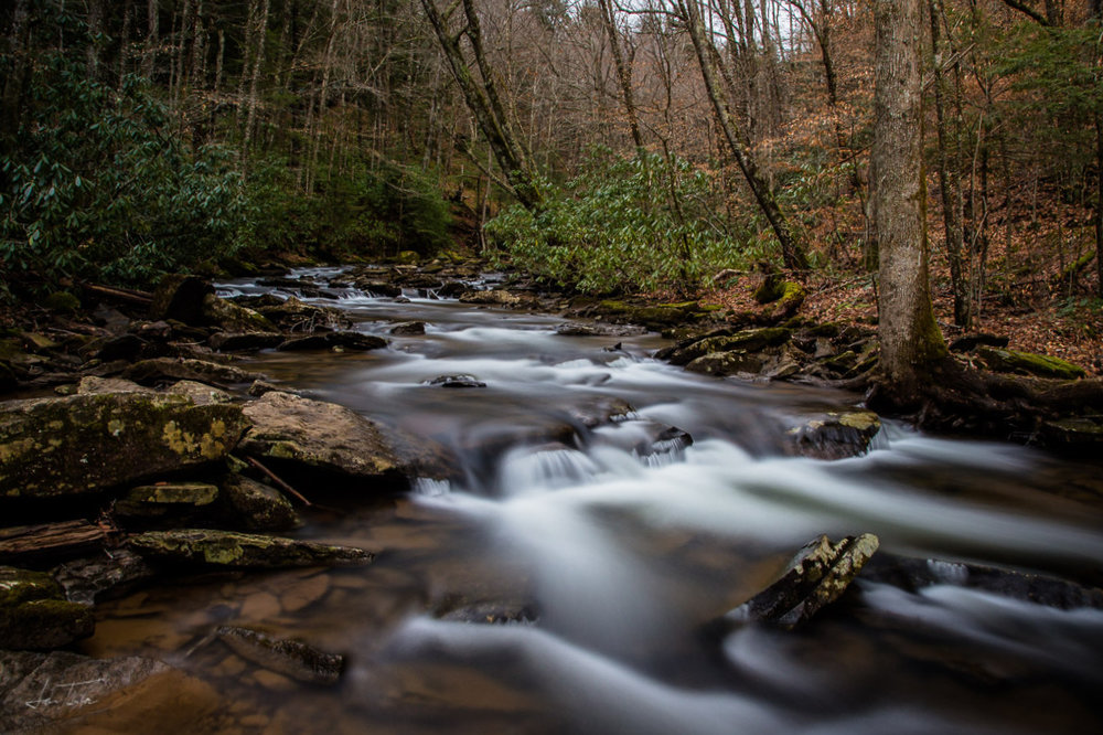 Run. Off. (Hills Creek, Winter 2018) - West Virginia