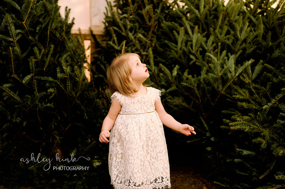 Carrie-ChristmasTree_12.2016-9.jpg