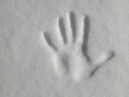 Handprint in Snow