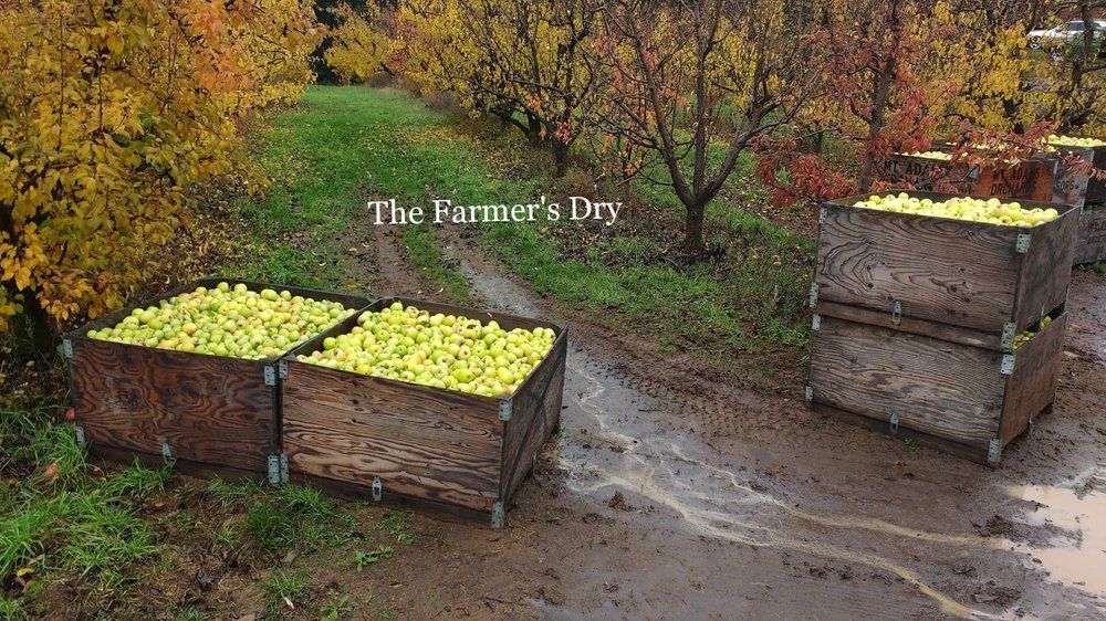 Farmers Dry.jpg