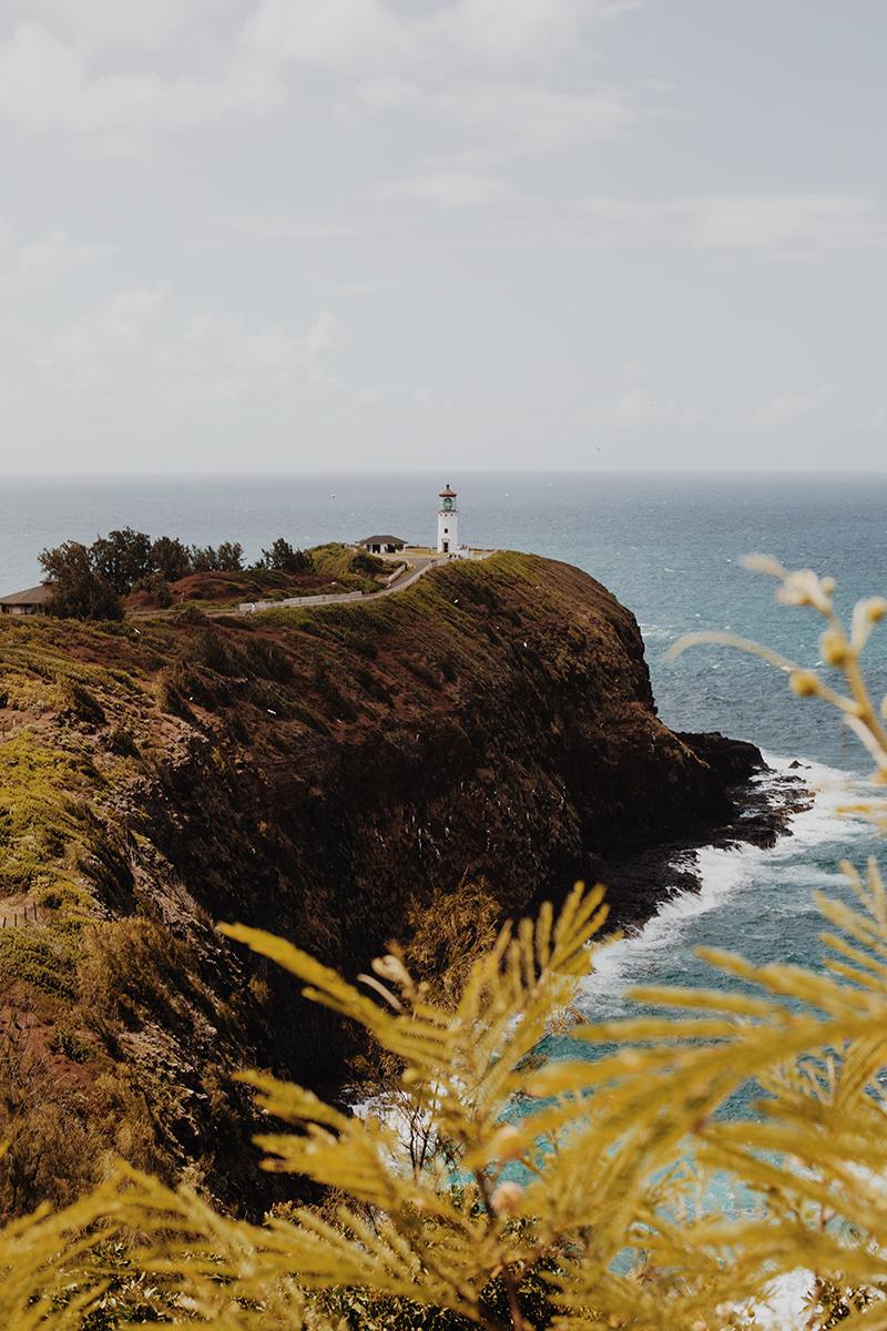 TRAVEL - KAUAI 2.jpg