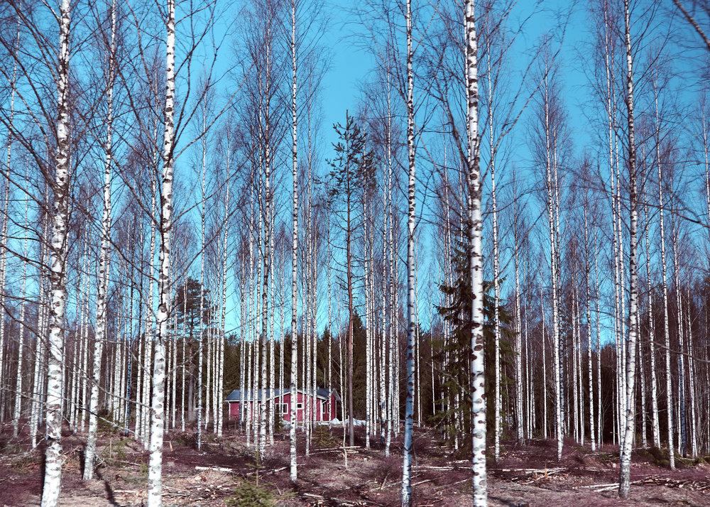 Suomi 2019