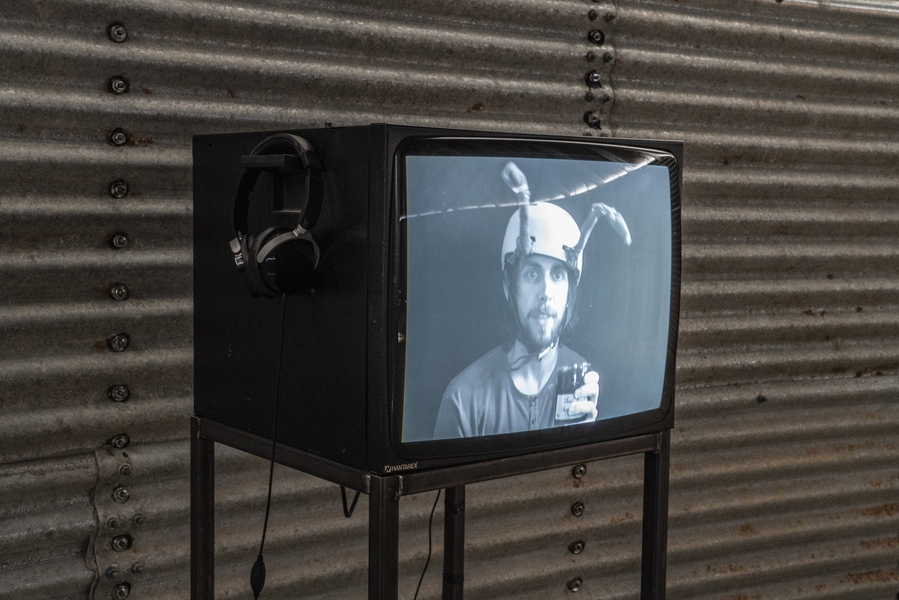 Lewys Holt in Hymenoptera, exhibited at Young London, 2018.