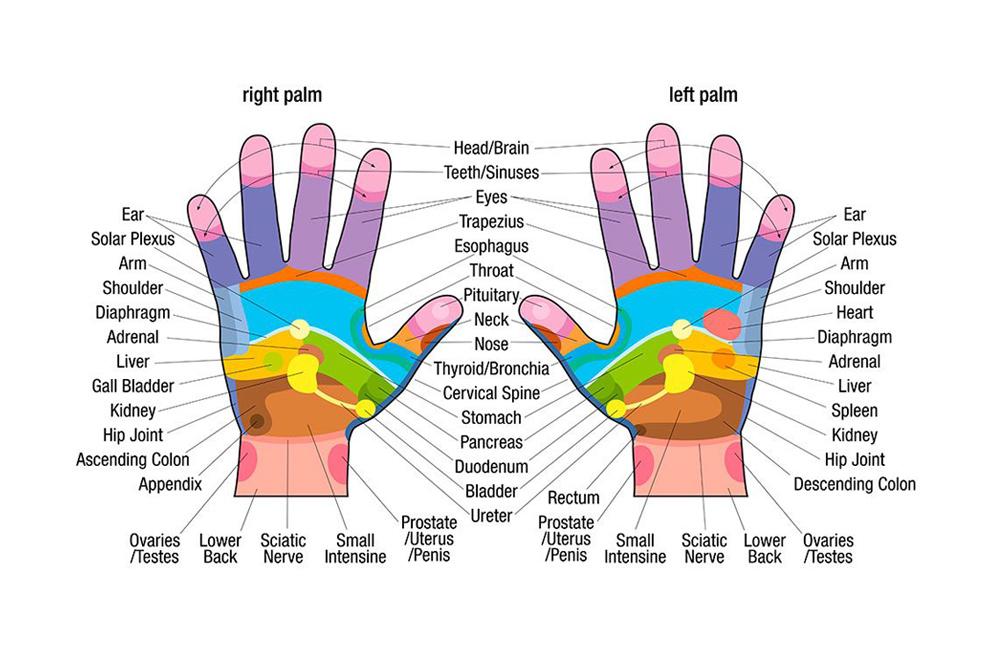 reflexology_chart_hand.jpg