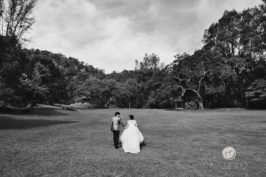 wedding photo at penang botanic garden