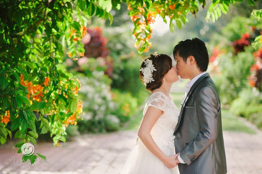 prewedding photography penang botanic garden