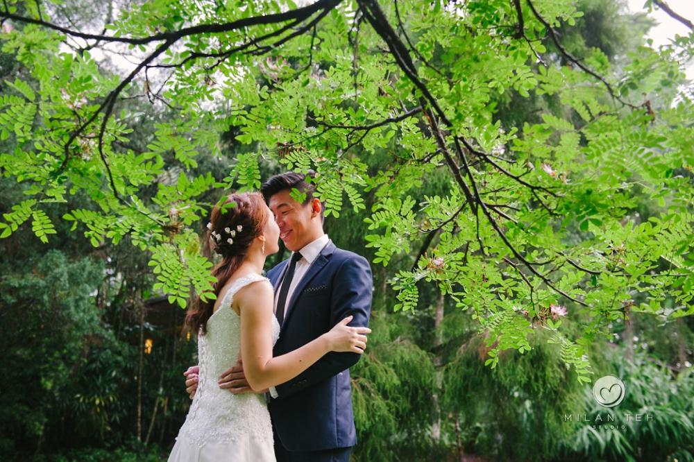 happy couple prewedding in singapore botanic gardens