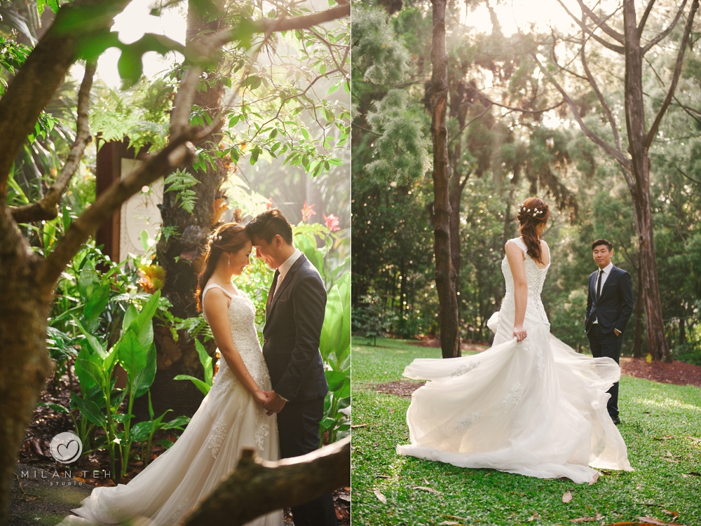 artistic prewedding photo of couple in botanic garden singapore