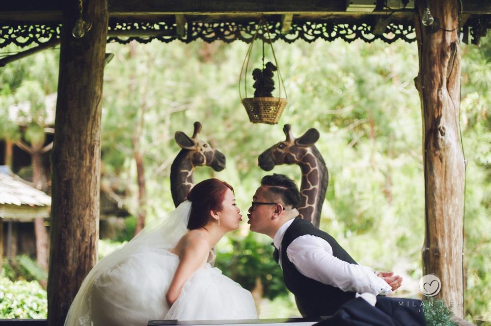 cute prewedding fig tree hill resort penang
