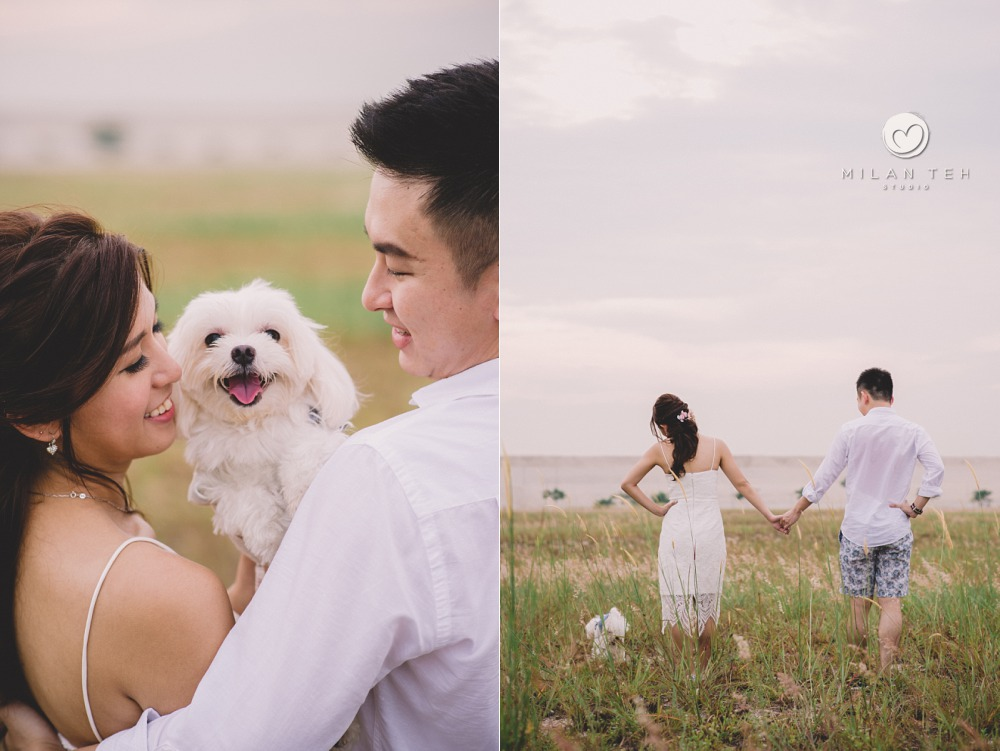singapore prewedding with dog