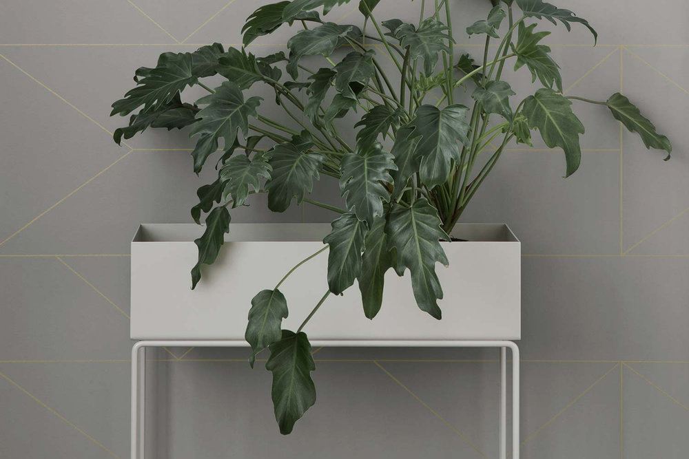 fermliving_plantbox_00.jpg