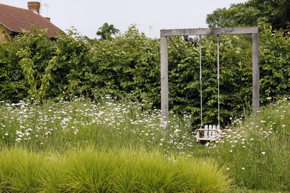 SGD-meadow-swing.jpg