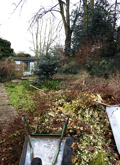 Wanstead garden before