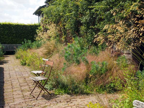 jardin-plume3.jpg