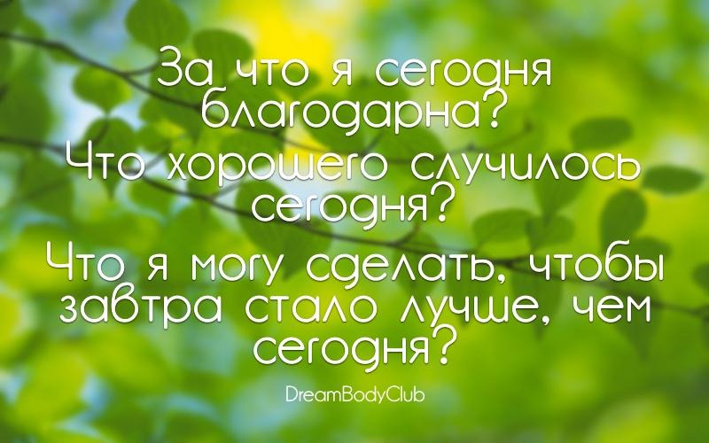 вопросы для дневника день 19 лайфстайл оксана новожилова dreambodyclub