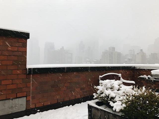 """New York, you and your first snow are a thing of beauty and a gift for heavy hearts. ❤️ ima get back to watching #HomeAlone now - leave your fave holiday movie in the comments 👇 Can't ever get enough of """"Keep the change, ya filthy animal."""" 🎄"""