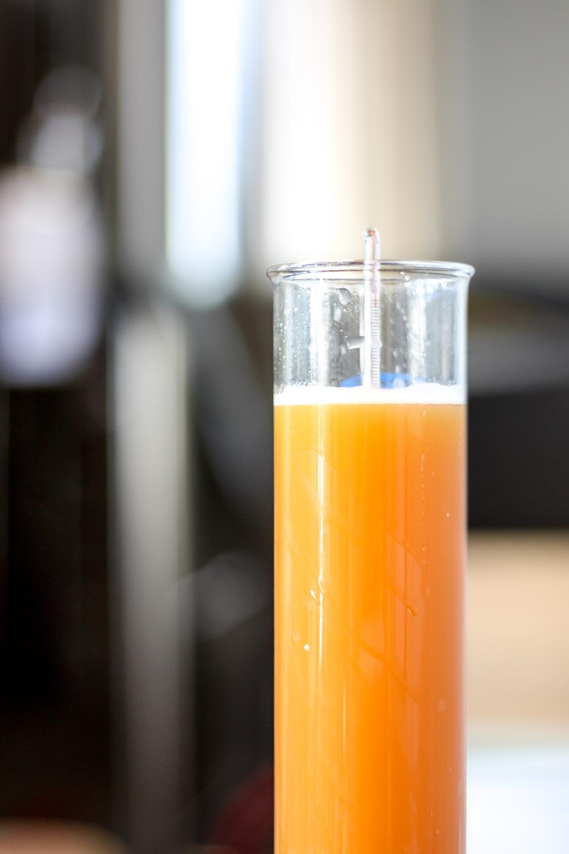 brew.jpg