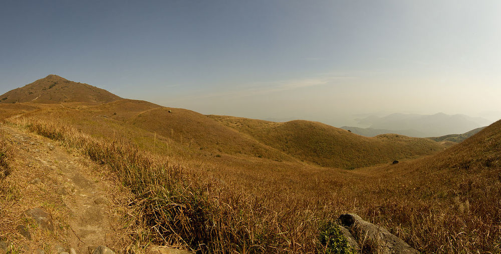 1Lantau_montane_grassland.jpg