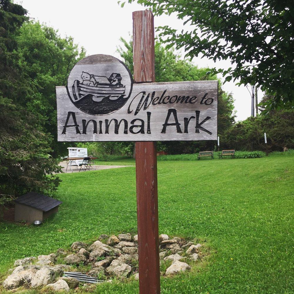 Animal Ark-5.jpg