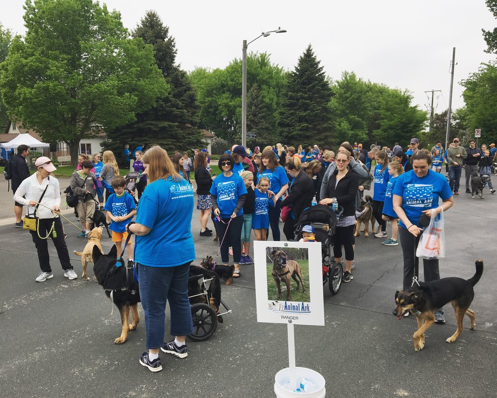 Animal-Ark-Nonprofit-Event-Minneapolis-MN.jpg