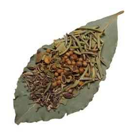 Leaf-Herb.jpg