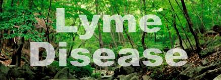 Lyme Disease.jpg